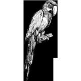 Dessin d'un perroquet