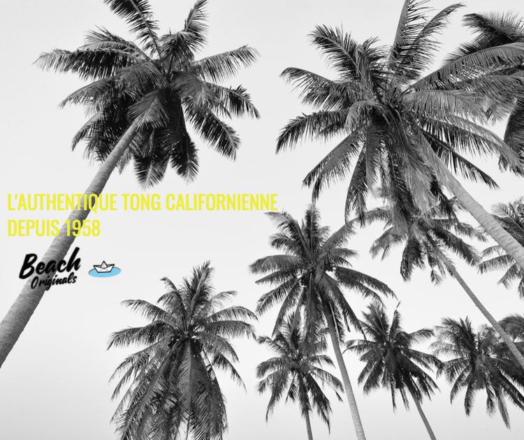 page mobile bureau Beach Originals sur fond de palmiers, texte couleur jaune banane et logo