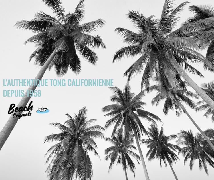 page mobile bureau Beach Originals sur fond de palmiers, texte couleur bleu lagon et logo