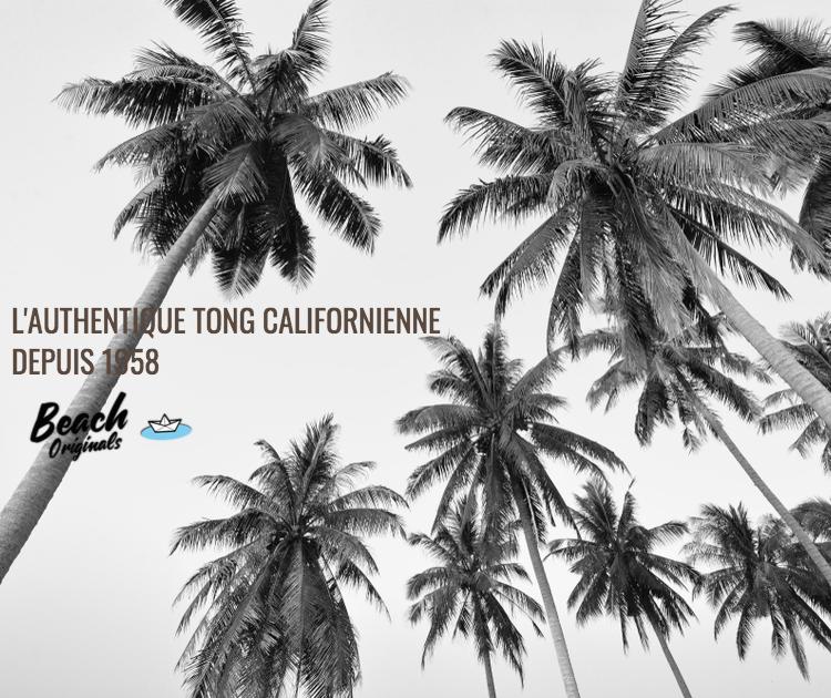 page mobile bureau Beach Originals sur fond de palmiers, texte couleur chocolat et logo