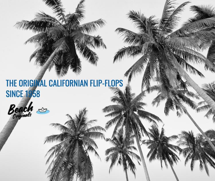page d'accueil mobile Beach Originals sur fond de palmiers et texte couleur bleu