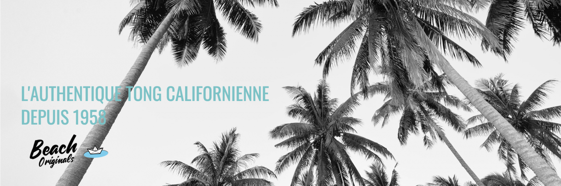 page d'accueil bureau Beach Originals sur fond de palmiers, texte couleur bleu lagon original et logo