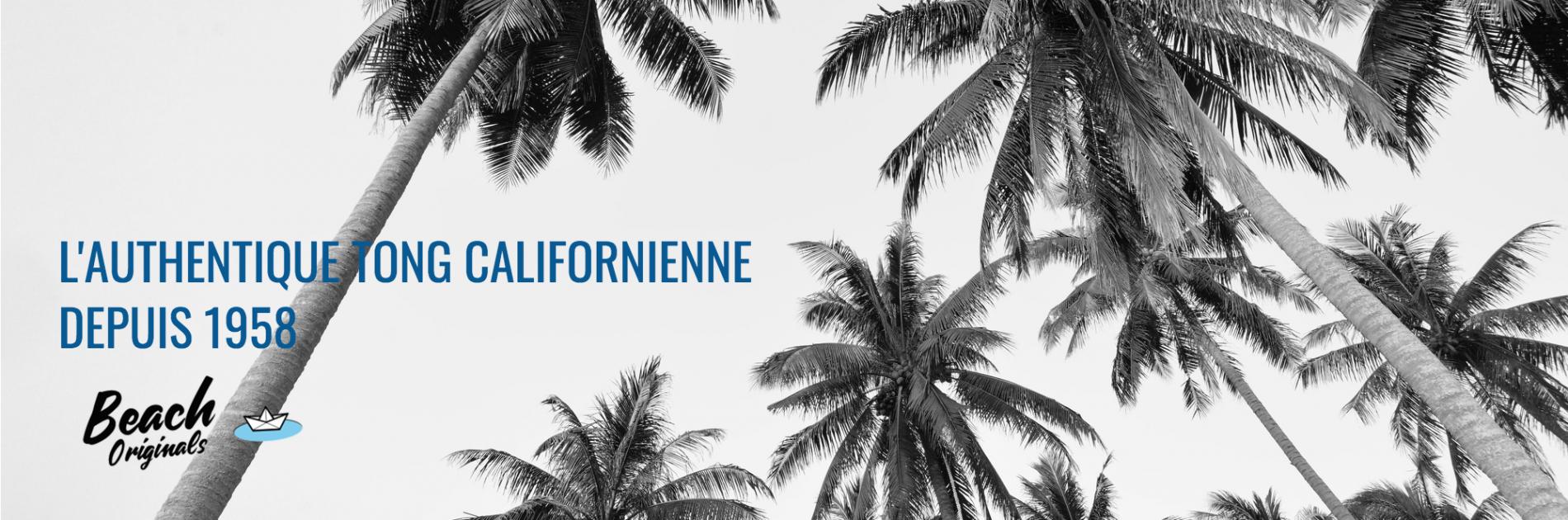 page d'accueil bureau Beach Originals sur fond de palmiers, texte couleur bleu original et logo