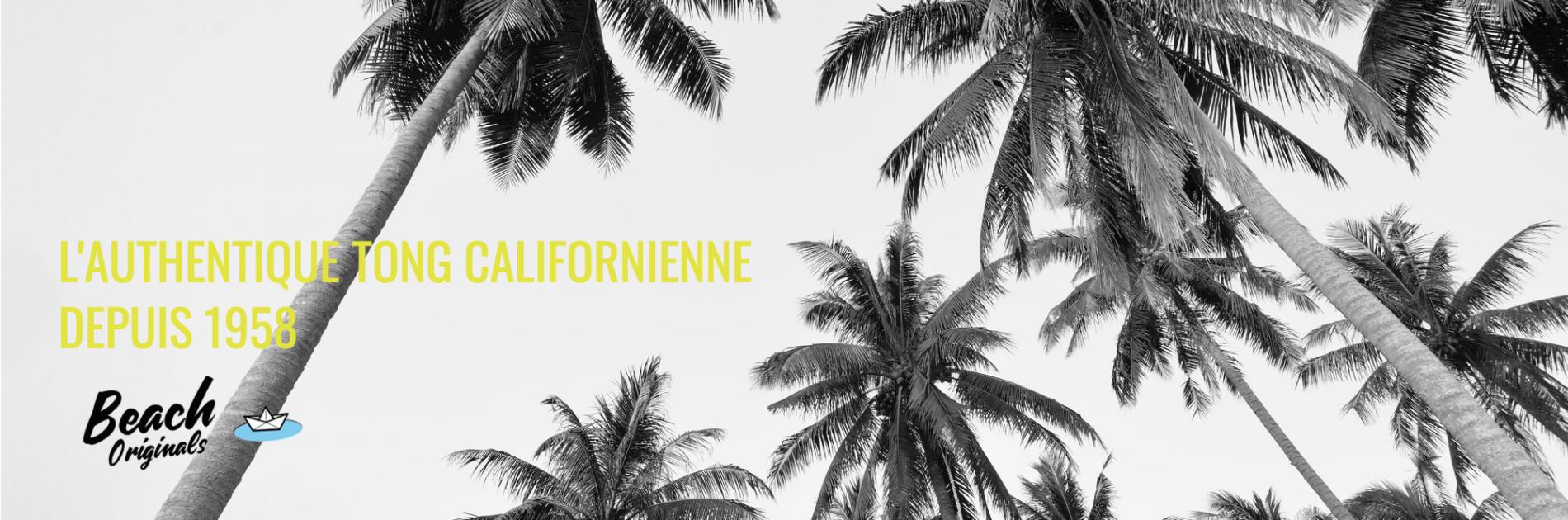 page d'accueil bureau Beach Originals sur fond de palmiers, texte couleur jaune banane et logo