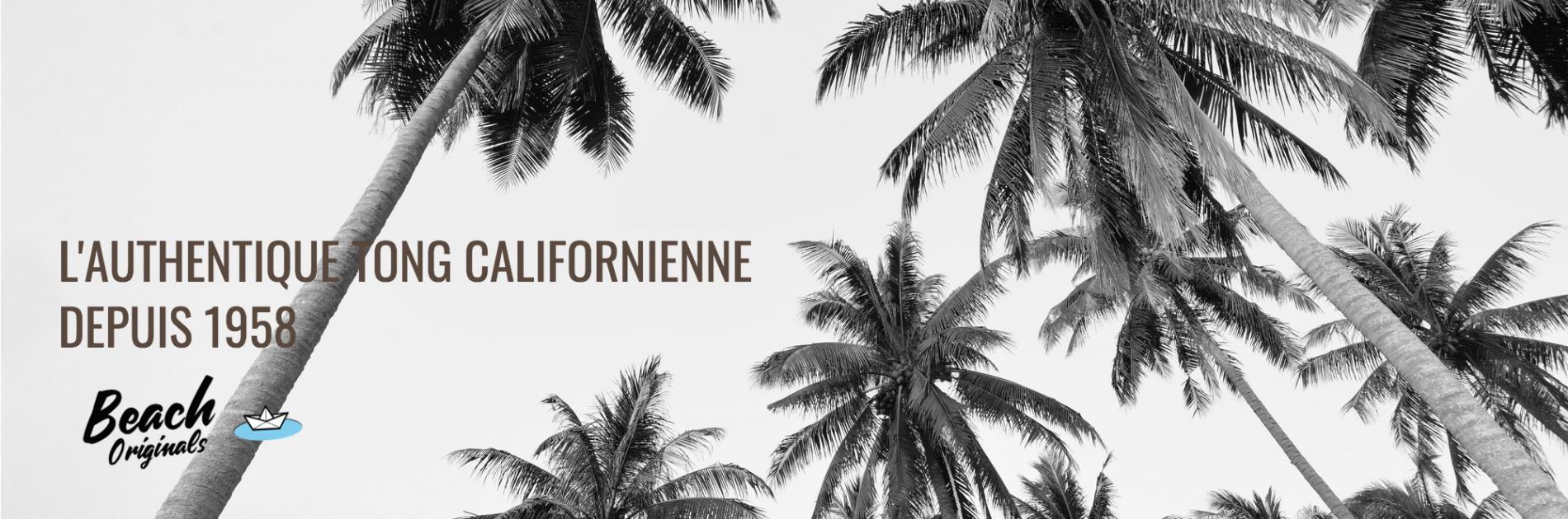 page d'accueil bureau Beach Originals sur fond de palmiers, texte couleur chocolat et logo