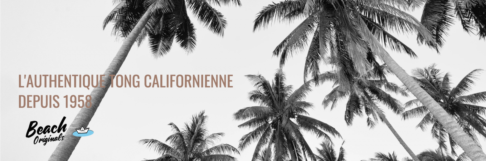 page d'accueil bureau Beach Originals sur fond de palmiers, texte couleur marron coco et logo