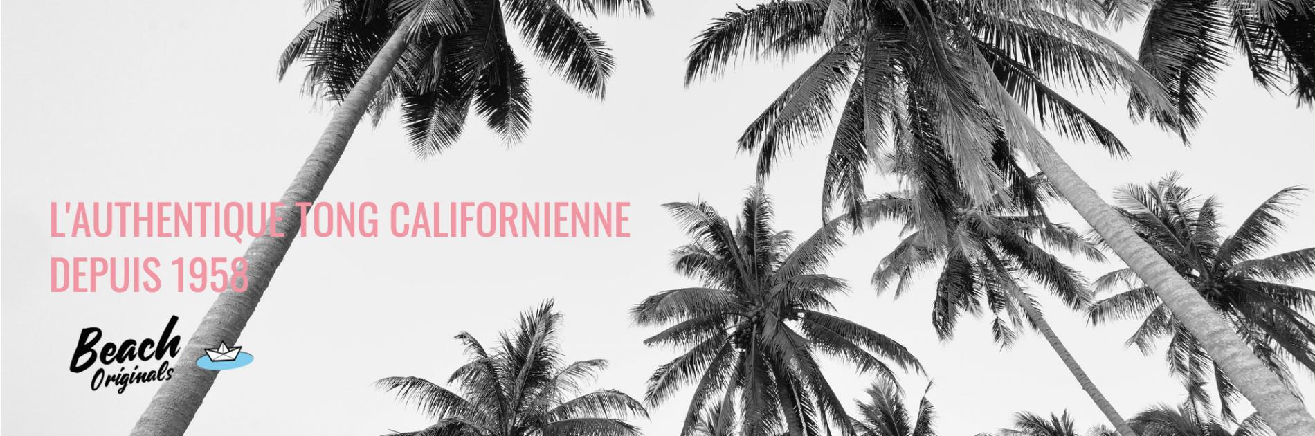 page d'accueil bureau Beach Originals sur fond de palmiers, texte couleur rose bubblegum et logo